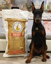 Актуальный безаллергийный корм для собак